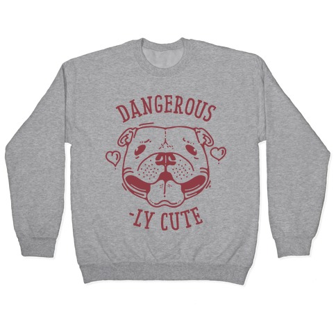 Dangerously Cute Pit Bull Pullover