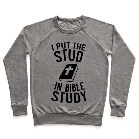 I Put The Stud In Bible Study Pullover