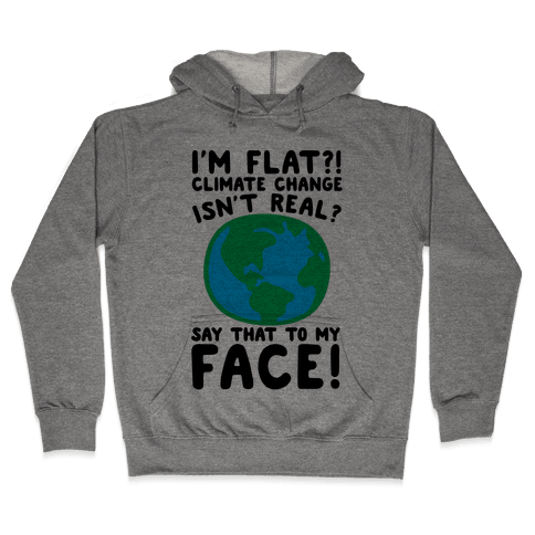 I'm Flat Climate Change Isn't Real Say That To My Face  Hooded Sweatshirt