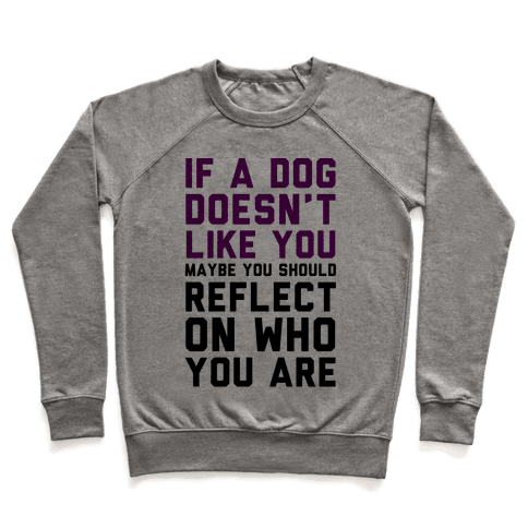 If A Dog Doesn't Like You Maybe You Should Reflect On Who You Are Pullover