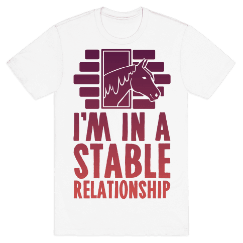 I'm In A Stable Relationship Mens T-Shirt