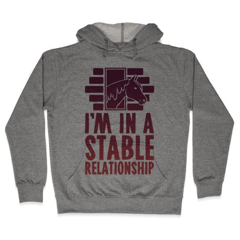 I'm In A Stable Relationship Hooded Sweatshirt
