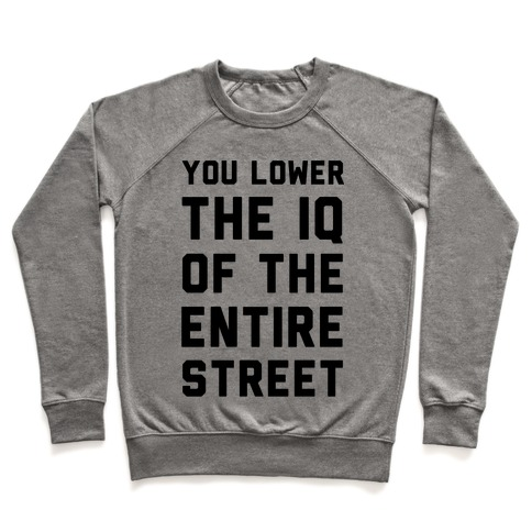 You Lower the IQ of the Entire Street Pullover