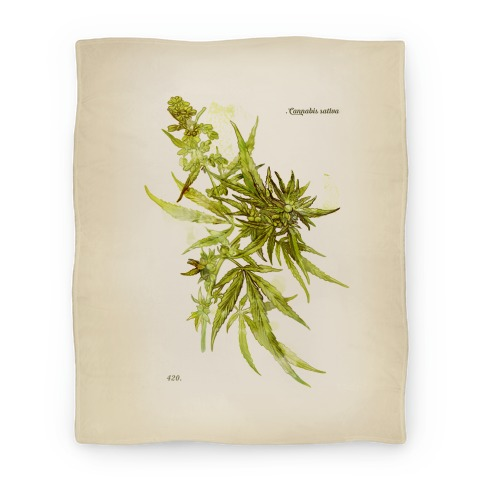 Cannabis Botanical Illustration Blanket