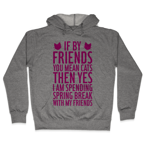 Spring Break With Friends Hooded Sweatshirt
