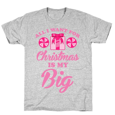 All I Want For Christmas Is My Big Mens T-Shirt