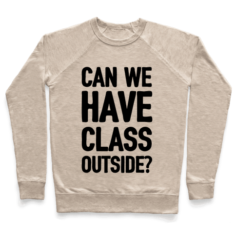Can We Have Class Outside Pullover