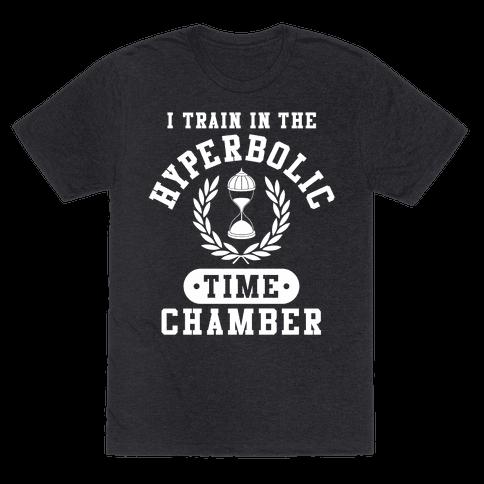 Hyperbolic Time Chamber