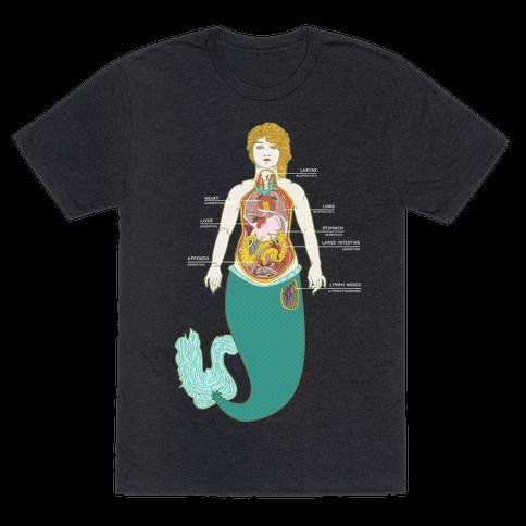 Mermaid Autopsy