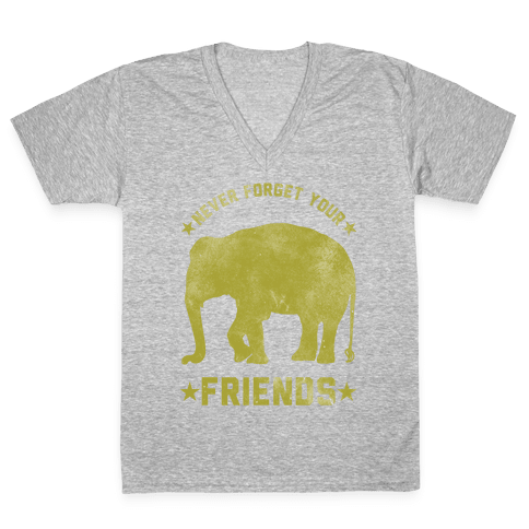 Never Forget Your Friends V-Neck Tee Shirt