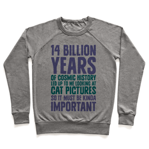 14 Billion Years of Cosmic History Pullover