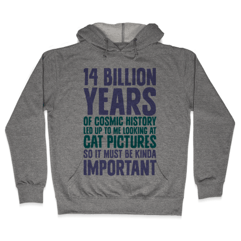 14 Billion Years of Cosmic History Hooded Sweatshirt
