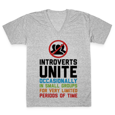 Introverts Unite! V-Neck Tee Shirt