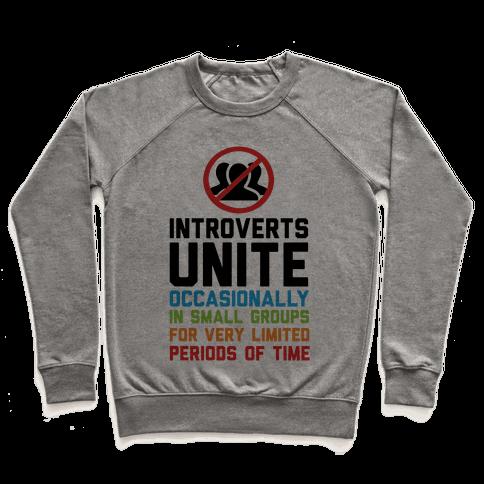 Introverts Unite! Pullover