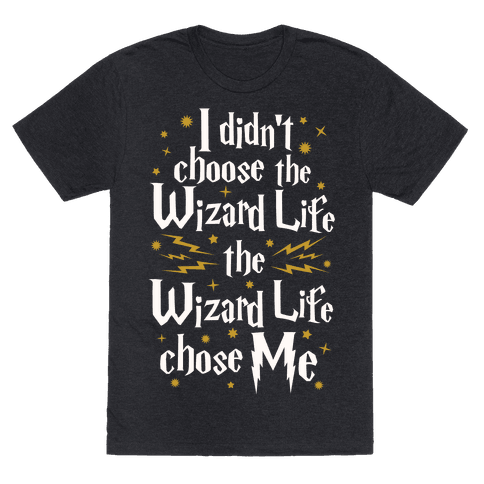 The Wizard Life Chose Me