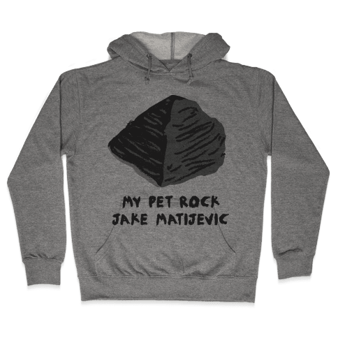 Jake Matijevic the Mars Rover Pet Rock Hooded Sweatshirt