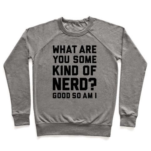 What Are You Some Kind Of Nerd? Pullover