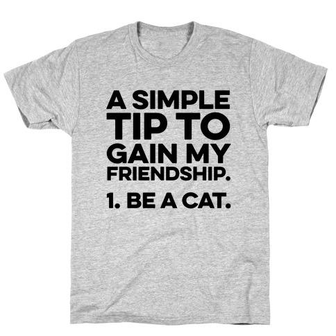 A Simple Tip to Gain My Friendship T-Shirt