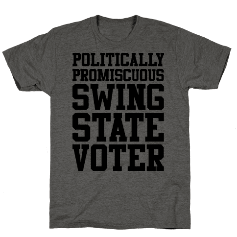 Politically Promiscuous Swing State Voter