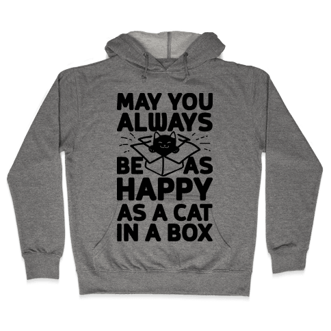 May You Always Be As Happy As A Cat In A Box Hooded Sweatshirt