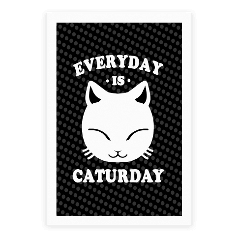 Everyday Is Caturday Poster