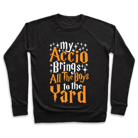 My Accio Brings all The Boys To The Yard Pullover