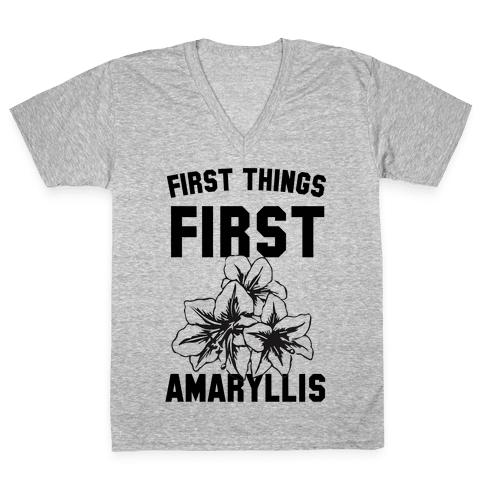 First Things First Amaryllis V-Neck Tee Shirt