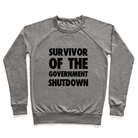 Survivor of the Government Pullover