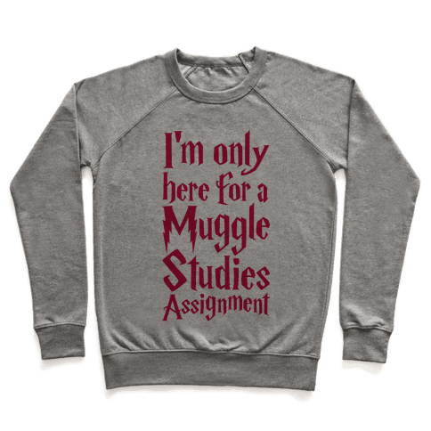 I'm Only Here For A Muggle Studies Assignment Pullover
