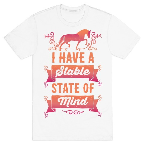 I Have A Stable State Of Mind Mens T-Shirt
