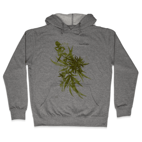 Cannabis Botanical Illustration Hooded Sweatshirt