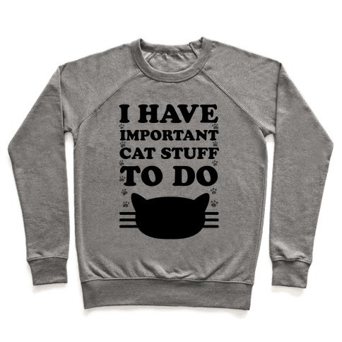 I Have Important Cat Stuff To Do Pullover