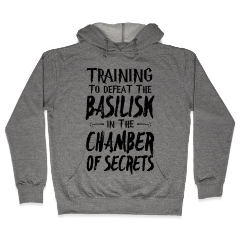 Training to Defeat the Basilisk in the Chamber of Secrets Hooded Sweatshirt