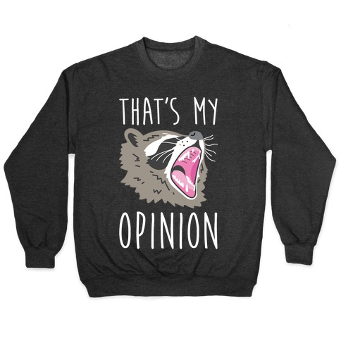 That's My Opinion Raccoon Pullover