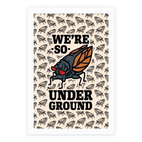 Cicadas Are So Underground