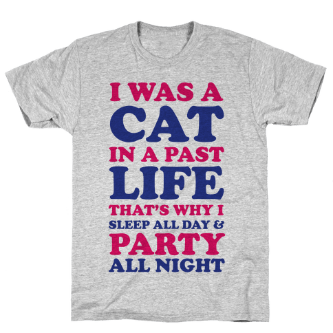 I Was a Cat in a Past Life That's Why I Sleep All Day Mens T-Shirt
