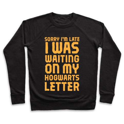 Sorry I'm Late, I Was Waiting On My Hogwarts Letter Pullover