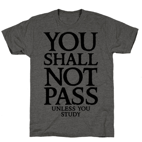 You Shall Not Pass (Unless You Study) Mens T-Shirt