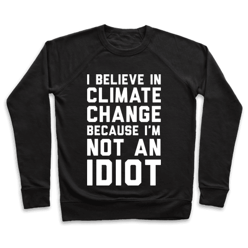 I Believe In Climate Change Because I'm Not An Idiot Pullover