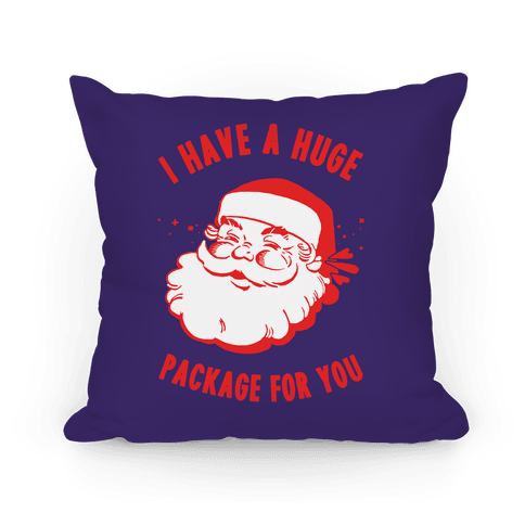 I Have A Huge Package For You Santa Pillow