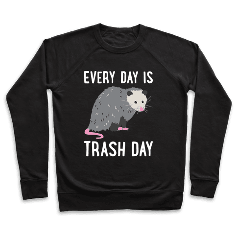 Every Day Is Trash Day Opossum Pullover
