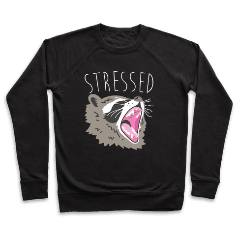 Stressed Raccoon Pullover