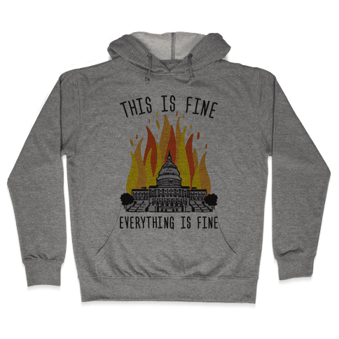 This Is Fine Everything Is Fine U.S. Capitol Hooded Sweatshirt