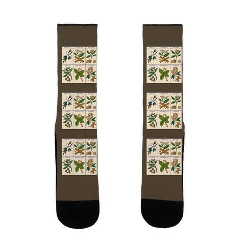 Holiday Spice Botanicals Sock