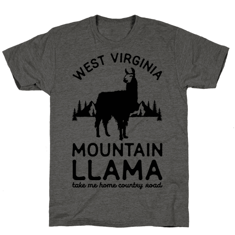Mountain Llama Take Me Home Mens T-Shirt