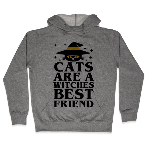 Cats are a Witches Best Friend Hooded Sweatshirt