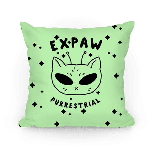 Expaw Purrestrial Pillow