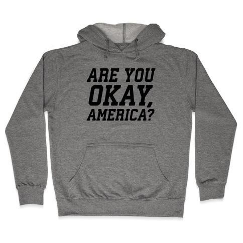 Are You Okay, America? Hooded Sweatshirt