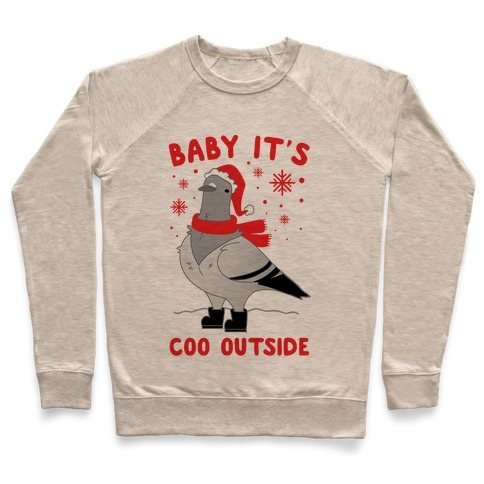 Baby It's Coo Outside Pullover