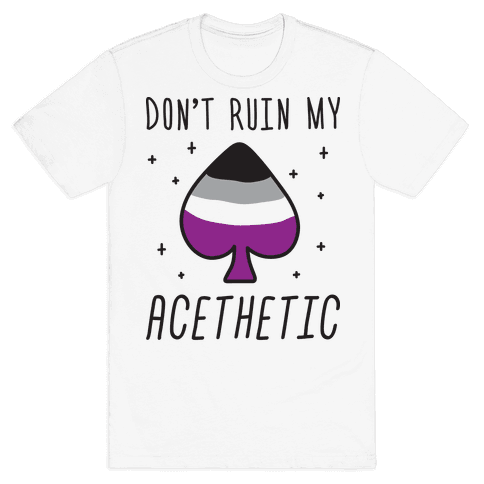Don't Ruin My Acethetic Mens T-Shirt